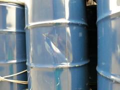 九成新藍色大鐵桶