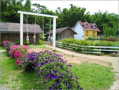 大屯花卉農園