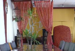 老樹香草咖啡餐廳