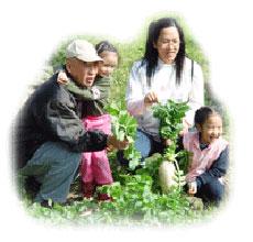 DIY觀光果園清香農場