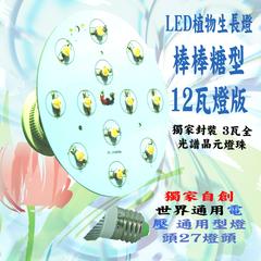 12瓦植物生長燈 種植用 12瓦 全光譜