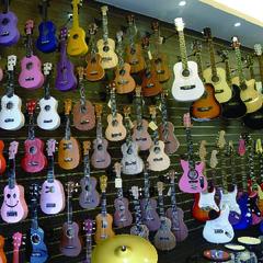 台中大雅音樂教室,烏克麗麗專賣店