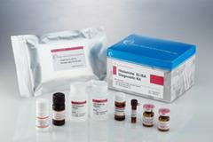 組織胺酵素免疫檢驗試劑盒