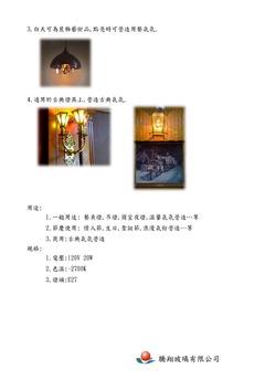 彩繪鎢絲燈泡 (E27接頭),另有LED