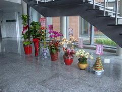 開幕 祝賀當選 成立大會必備賀禮洽熊愛的花苑
