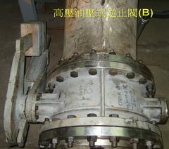 油壓缸式逆止閥(B)